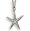 * Sea Star Pendant Chain (M)!