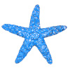 * Sugar Sea Star!